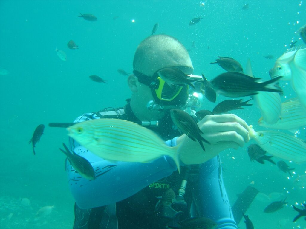 Diving in Sarti Sithonia